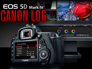 Rent: Canon EOS 5D Mark IV w/ Canon Log, 1 of 2