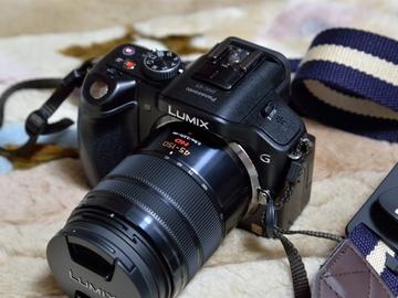 Rent: Panasonic Lumix G Vario 45-150mm f/4-5.6 ASPH. MEGA O.I.S. L