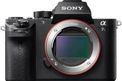 Rent: Sony A7s II, Shogun Flame, Metabones, Extras