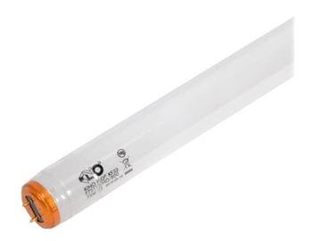 Rent:  Kino Flo Tungsten Bulbs / 2ft