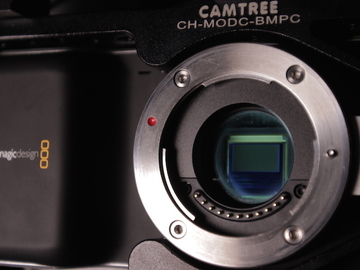 Rent: Blackmagic Pocket Cinema Camera (Body, batteries kit)