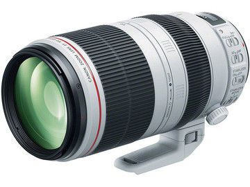 Rent: Canon 100-400mm L-Series IS