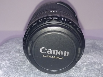 Rent: Canon EF 70-300mm f/4-5.6 L IS USM