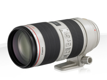 Rent: Canon EF 70-200MM IS II F/2.8L