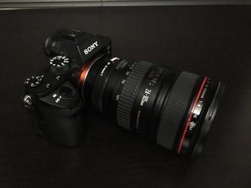 Rent: Sony a7S II  w/Metabones Adaptor + 24-105 Canon Lens