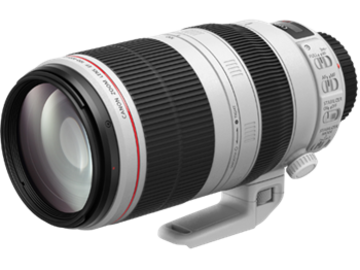 Rent: Canon EF 100-400mm f/4.5-5.6L IS USM