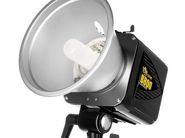 Rent: Alien Bees B800 (With Umbrella/Transmitter)