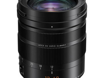 Rent: Panasonic Leica DG Vario-Elmarit 12-60mm f/2.8-4 ASPH. POWER