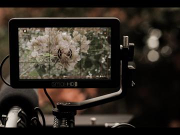 Rent: lumix gh5, metabones 0.64 xl, small hd focus, camera cage