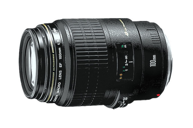 Canon - EF 100mm f/2.8 USM Macro Lens - Black