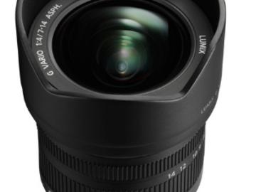 Rent: Panasonic Lumix G Vario 7-14mm f/4 ASPH. Lens