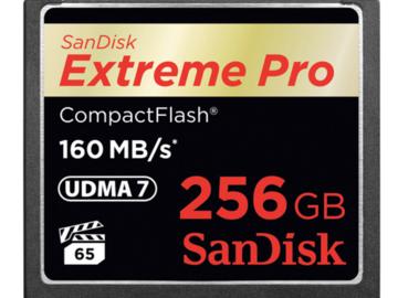 Rent: SanDisk 256GB CF Card