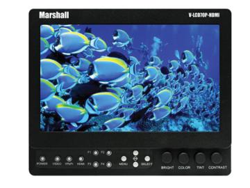 "Rent: Marshall 7"" Monitor V-LCD70XP"