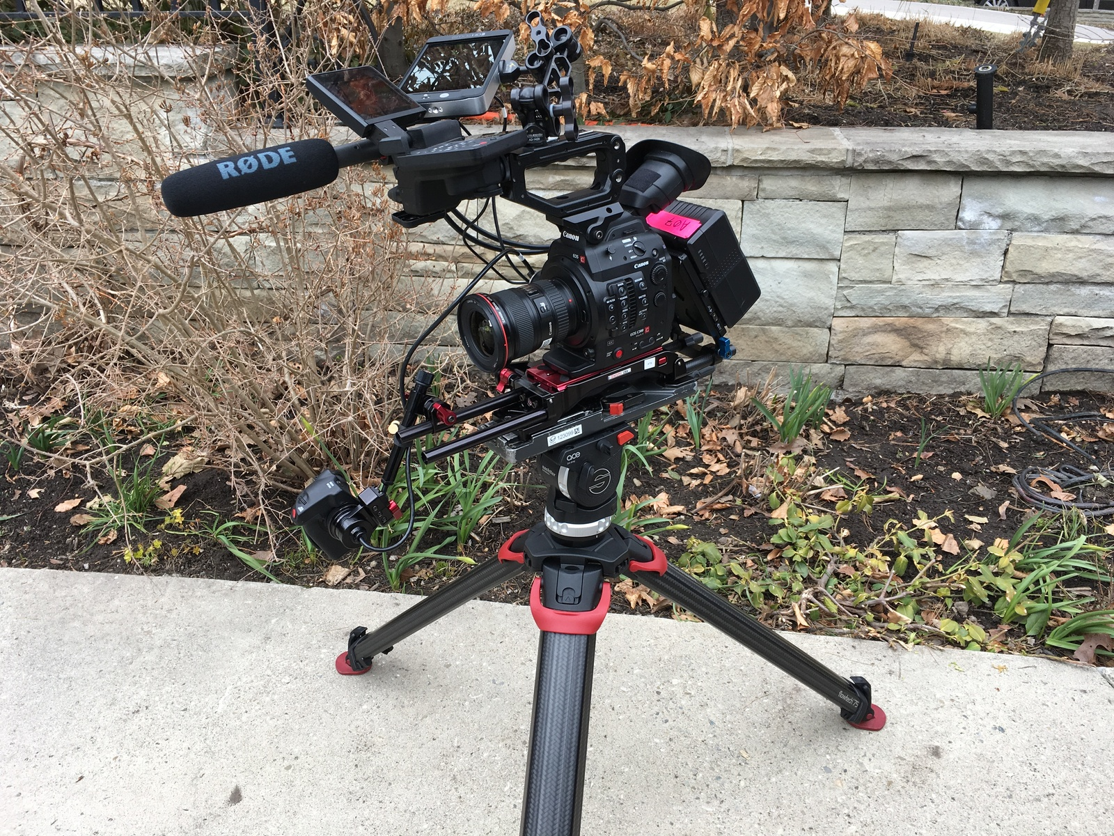 Rent a Canon C300 Mark II Documentary Pkg w/ V-Mount Batteries, Best Prices  | ShareGrid Los Angeles