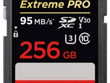 Rent: SanDisk 256GB SD Card (Perfect for 4K Ultra HD)