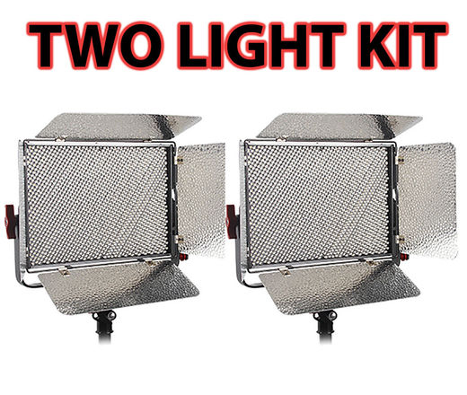 Aputure Light Storm LS 1s (TWO LED PANELS)