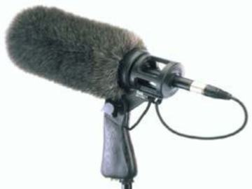 Rent: Sennheiser 416 Boom Kit (2 Available)