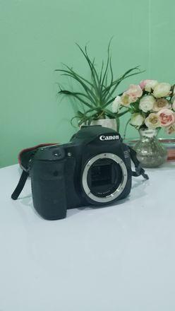 Canon EOS 60D & zoom lens