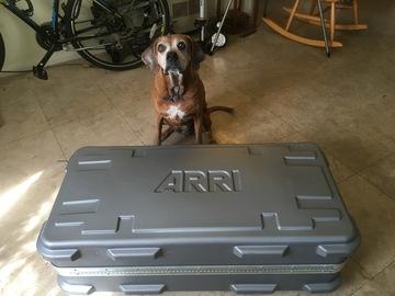 Arri (3x 650w; 1x 750w Open/Soft) - Brightest Arri Kit Avail