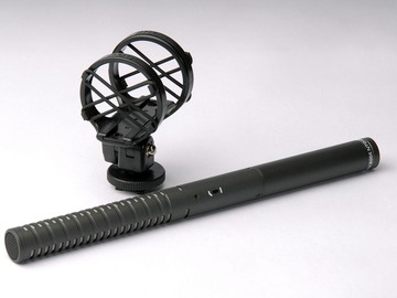 Rent: RODE NTG-2 Shotgun Mic & Boompole Package
