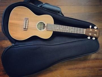 Rent: Cordoba 25CK ukulele