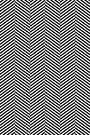 Hounz Black & White Photo Backdrop - PolyPaper / 5' x 8'