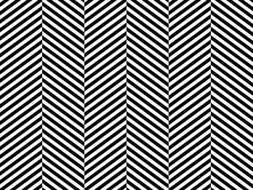 Rent: Hounz Black & White Photo Backdrop - PolyPaper / 5' x 8'