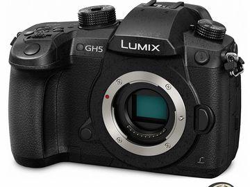 Rent: PANASONIC LUMIX GH5 Body 4K Mirrorless Camera