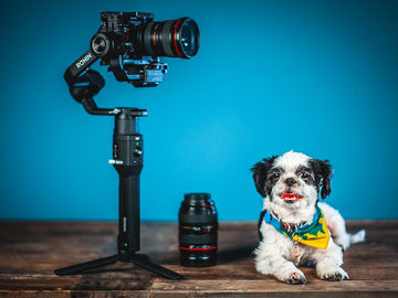 Sony A7iii with Ronin-S and Lenses Camera Package