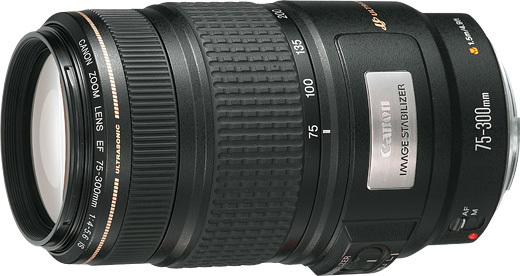 Canon EF 75-300mm f/4-5.6 IS USM TELEPHOTO ZOOM Lens