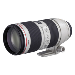 Canon EF L 70-200mm f/2.8 IS II USM