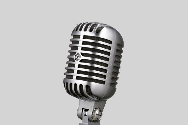 Shure SM 55SH microphone