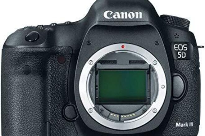 Canon EOS 5D Mark III (includes batteries and cards)