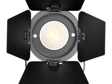 Rent: Fiilex P360 LED Light (Set of 2)
