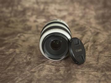 Rent: Canon EF 70-300mm f/4-5.6L IS USM Lens