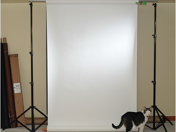 Rent: 12' Seamless Paper Background with Stands. White and Gray