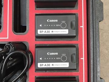 Rent: Canon C300 Mark II Battery Kit