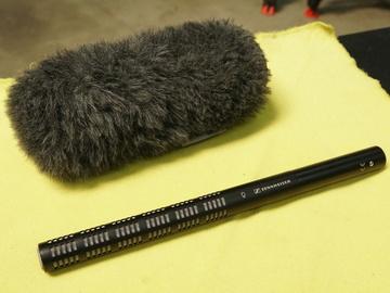 Rent: Sennheiser ME66 Professional Shotgun Microphone