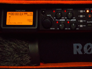 Rent: Audio Kit (Rode NTG4+ Shotgun, Tascam DR-70D)