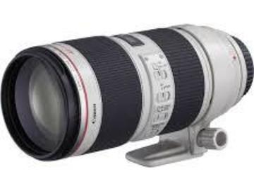 Rent: Canon EF 70-200mm f/2.8 L IS II Telephoto lens