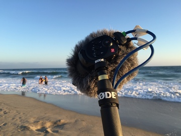 Rent: Rode Stereo Video Mic X