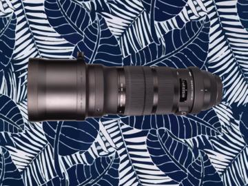 Rent: Sigma 120-300mm f/2.8 DG OS HSM Sports