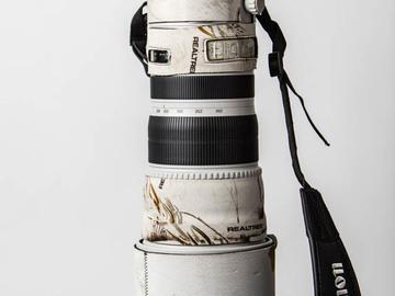 Rent: Canon 200-400 f4