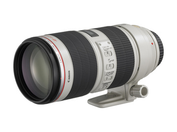 Canon L-series 70-200 F2.8 Image stabilized (x5 available)