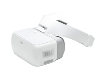 Rent: DJI Goggles Locked and Loaded