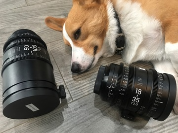 Rent: Sigma 18-35mm & 50-100mm T2 Cine Lens Kit (EF Mount)