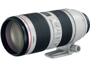 Rent: Canon EF 70-200 f/2.8 IS ii
