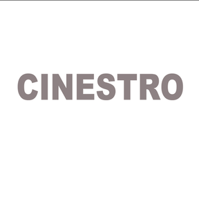 CINESTRO LLC