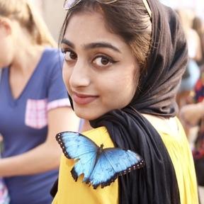 Wafa Naqvi