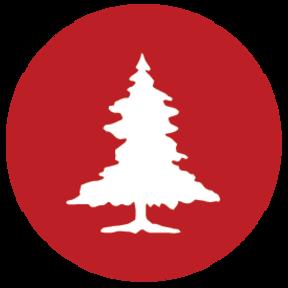 Rebel Forest Ltd.